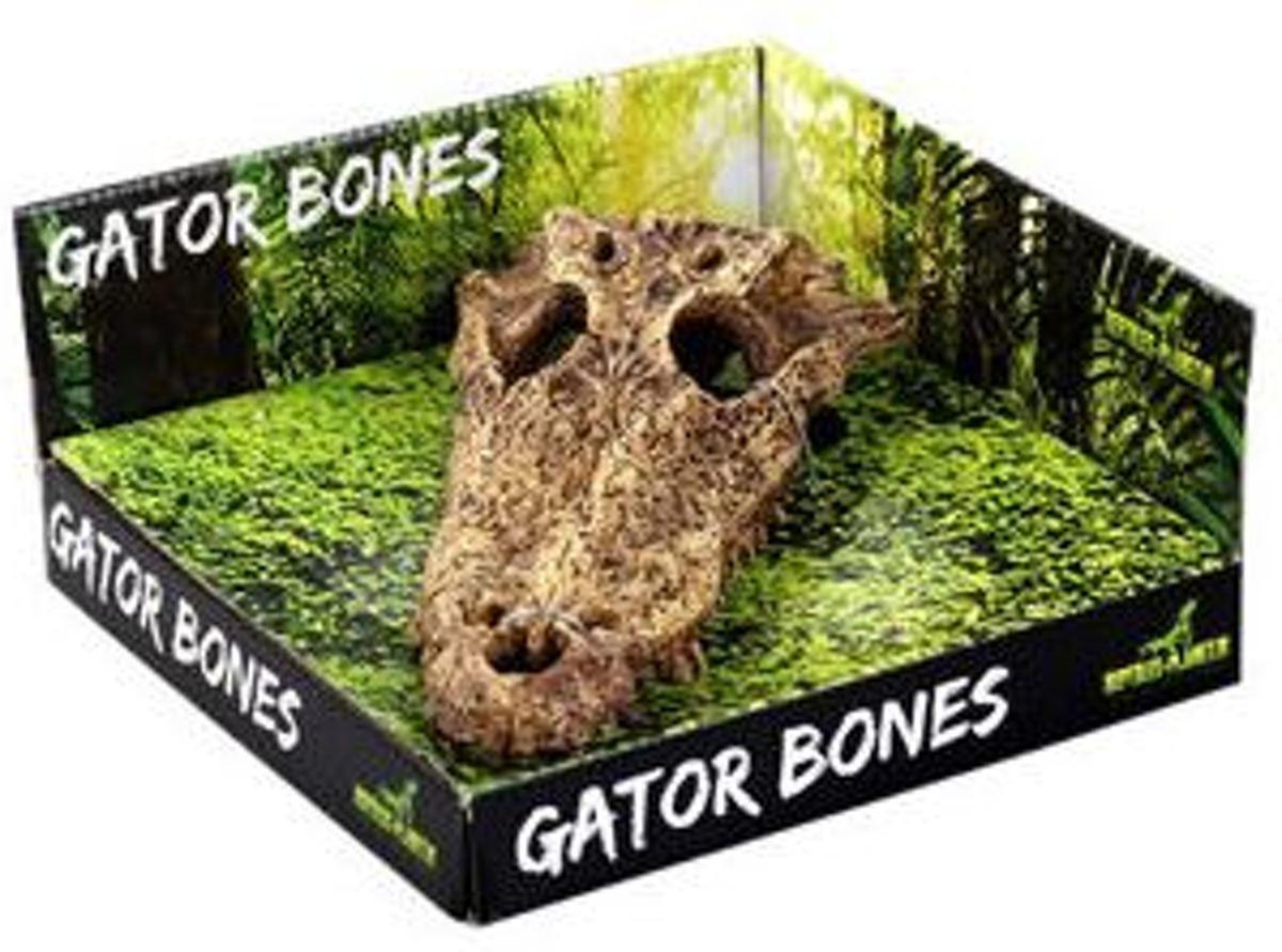 Gator Bones