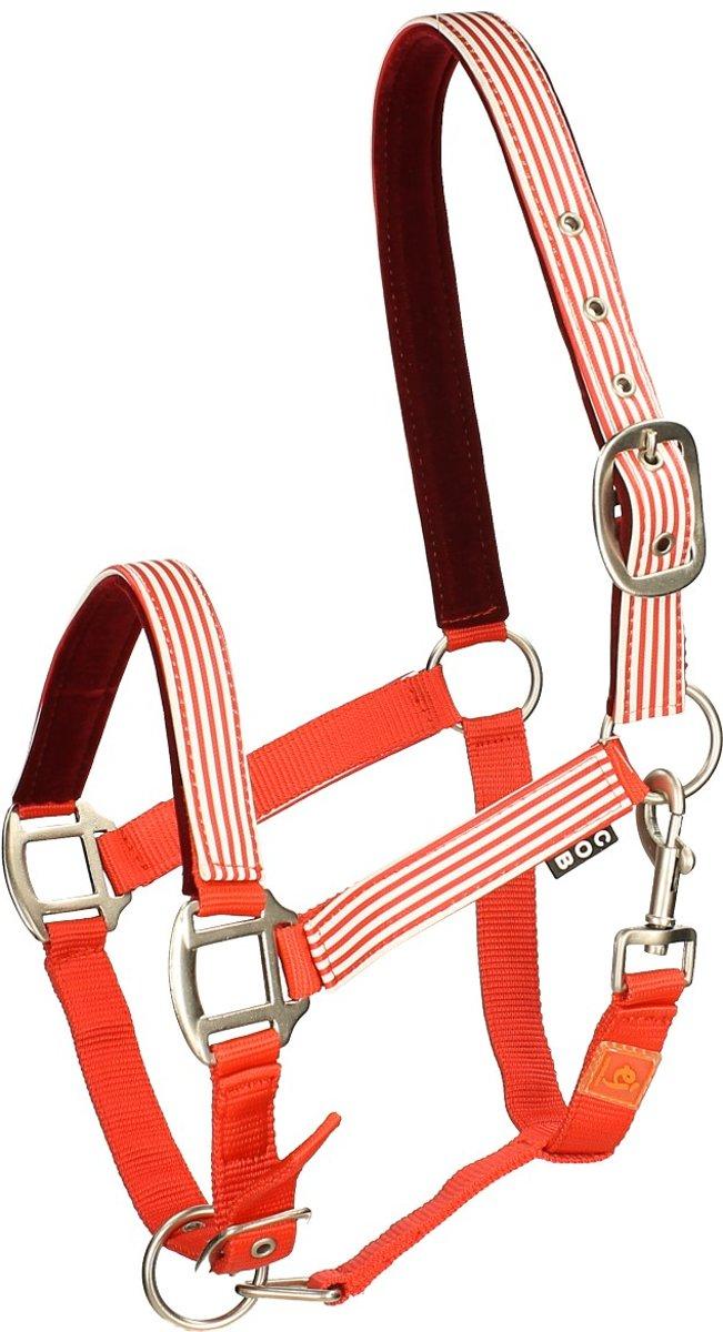Epplejeck Halster  Stripe - Red - pony kopen