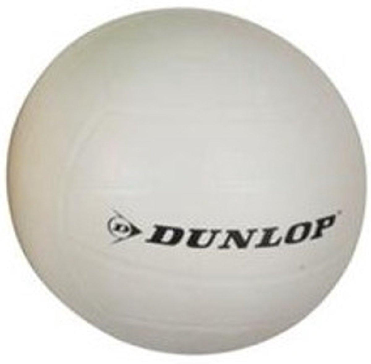Dunlop Volleybal Rubber Maat 5 Wit kopen
