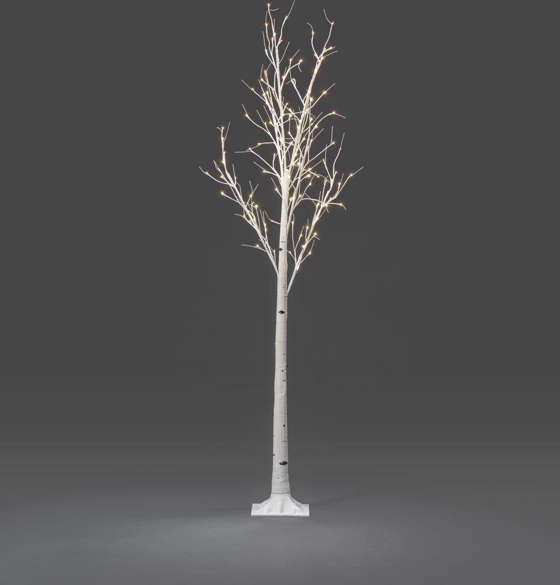 Konstsmide - LED berk op voet 240cm 24V 120x - warmwit kopen