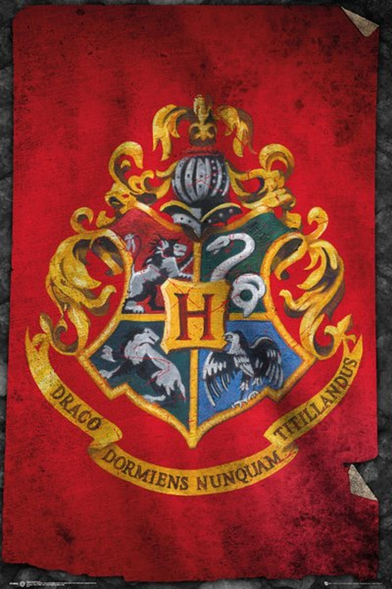 Harry Potter Maxi Poster Hogwarts Flag kopen