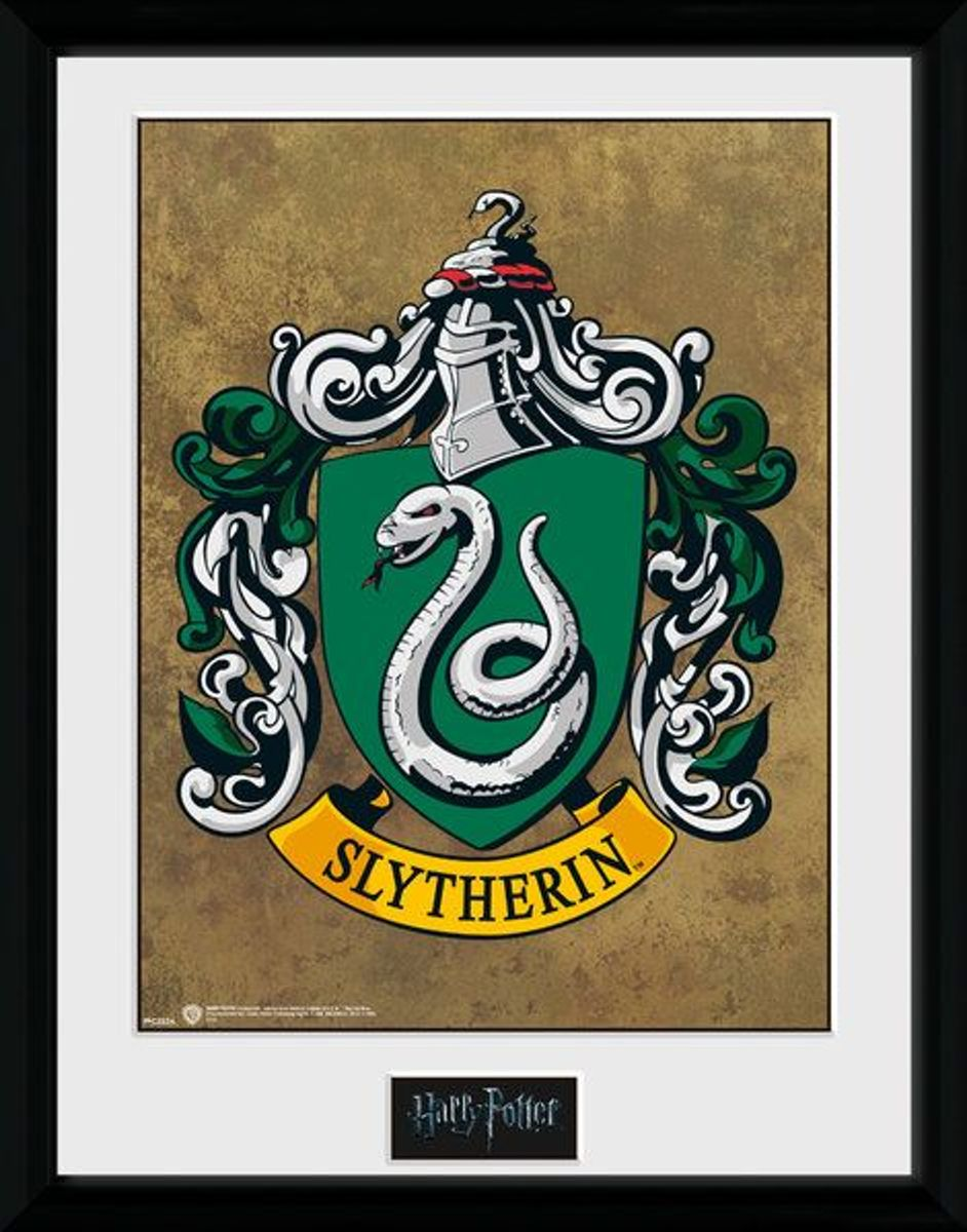 Harry Potter Slytherin - Collector Print 30x40 kopen
