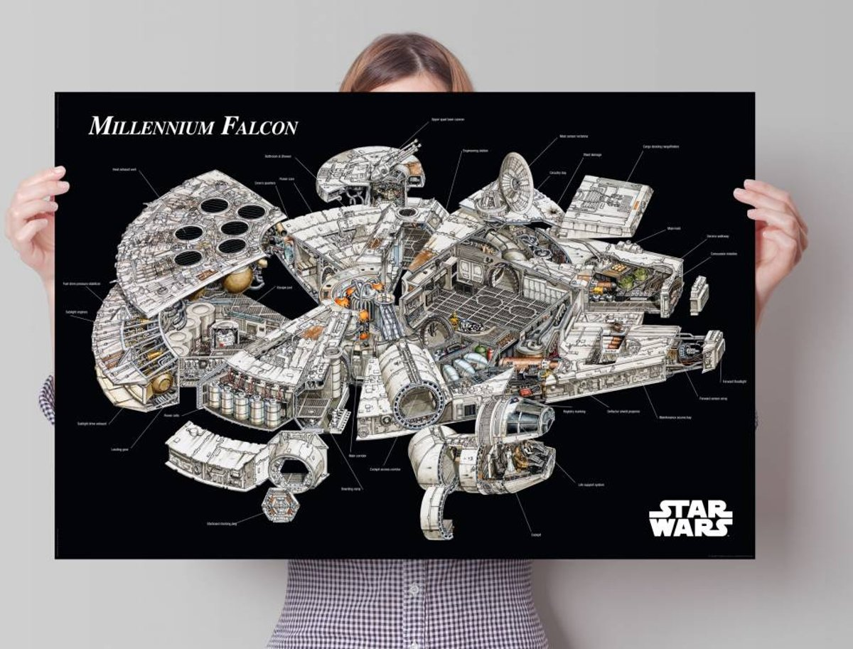 Reinders Star Wars - Millennium Falcon cross-section - Poster - 91,5 × 61 cm kopen