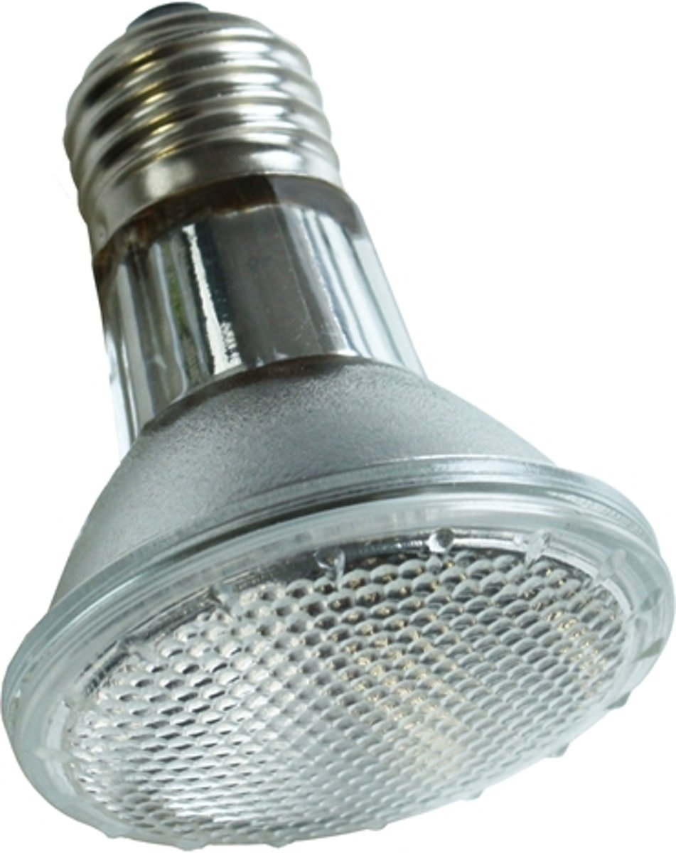 Komodo Halogeen Spot Lamp - ES 50 Watt kopen