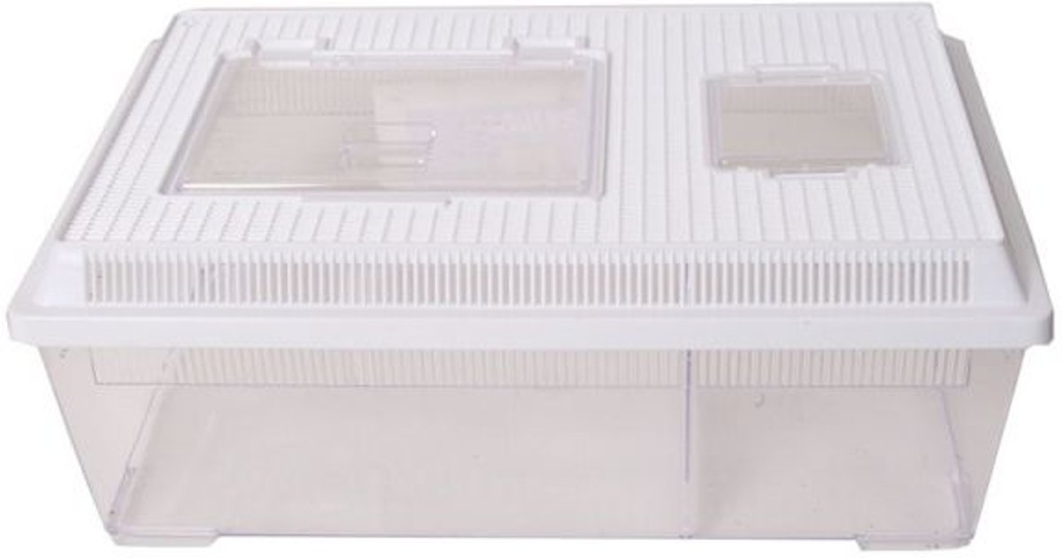 Pl terrarium met wit kapje 30x45x19cm