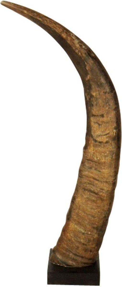 Hoorn Op Hout Buffel 50cm (bison Bison)