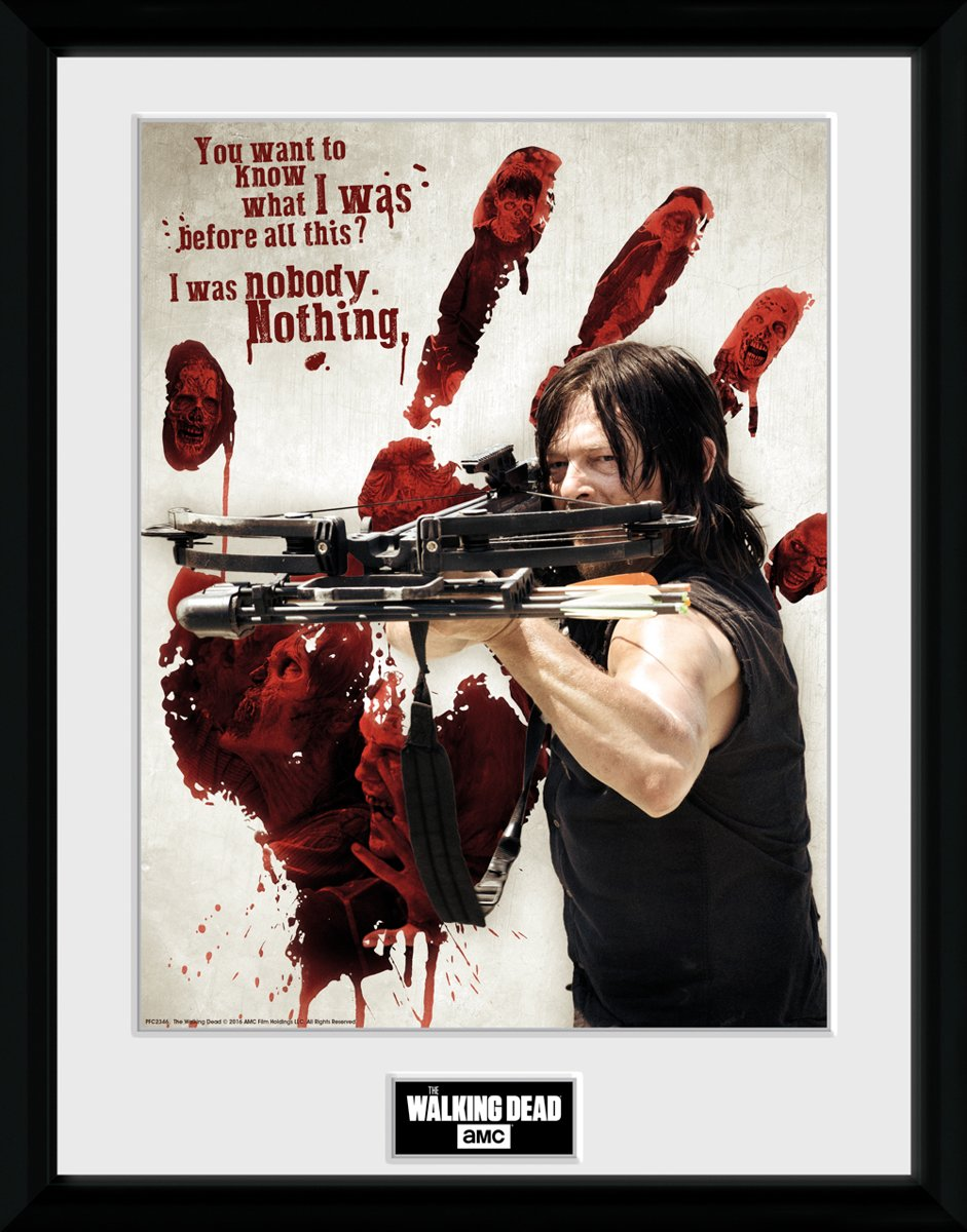 THE WALKING DEAD - Collector Print 30X40 - Bloody Hand Daryl kopen