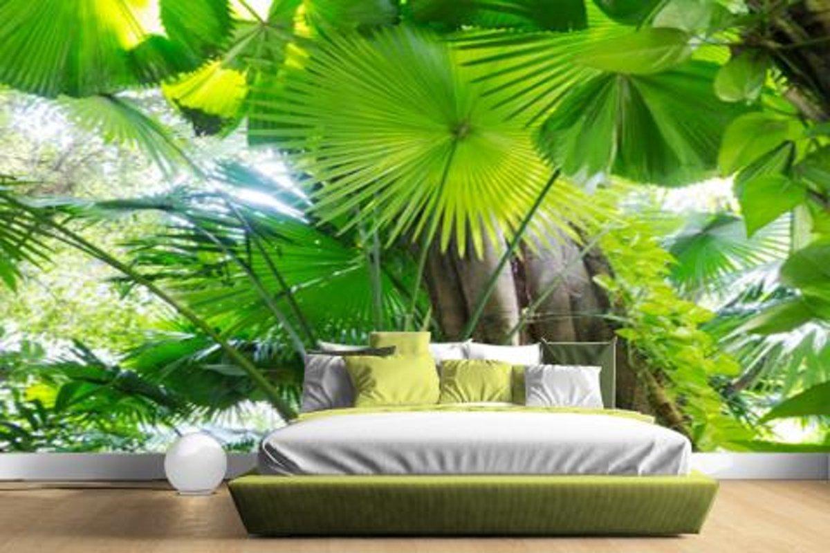 Tropisch Regenwoud Fotobehang 380x265