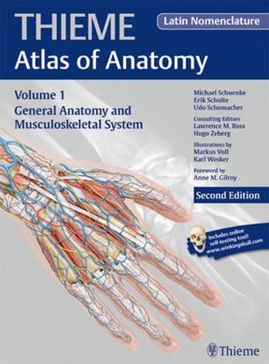 bol.com   General Anatomy and Musculoskeletal System (THIEME Atlas ...