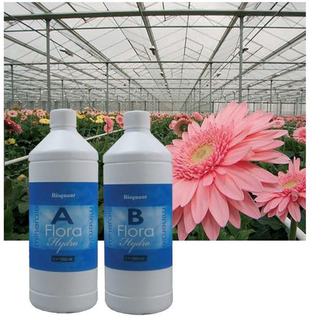 BioQuant, Bio Mineraal Flora 1 Liter(A+B)