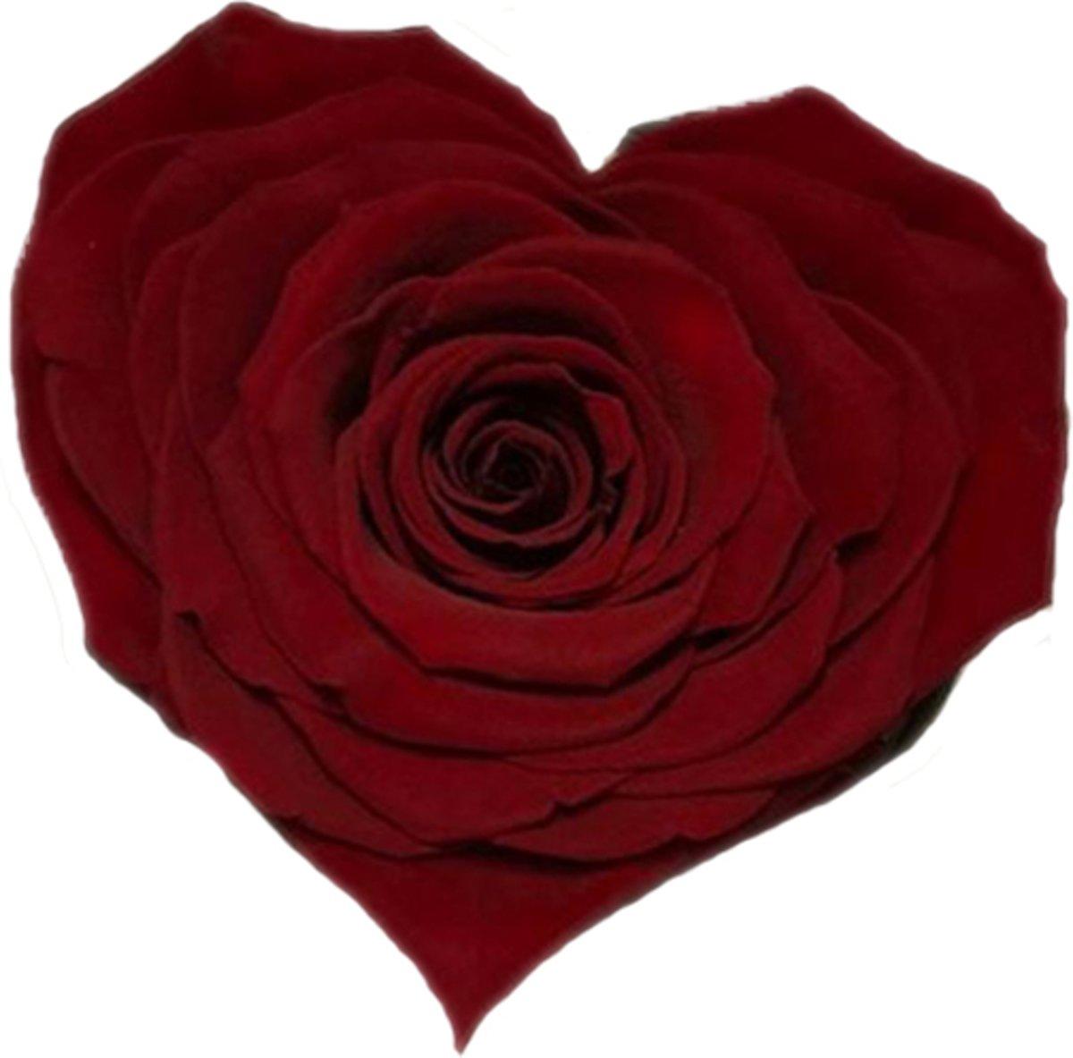 Donker rode rozen kop in hartvorm kopen