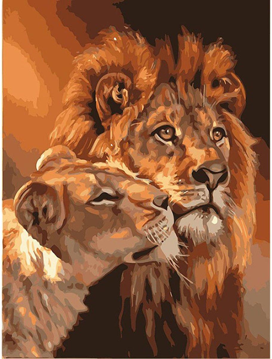 Schilderen op nummer - Volwassen leeuw met welp - 40 x 50 centimeter kopen