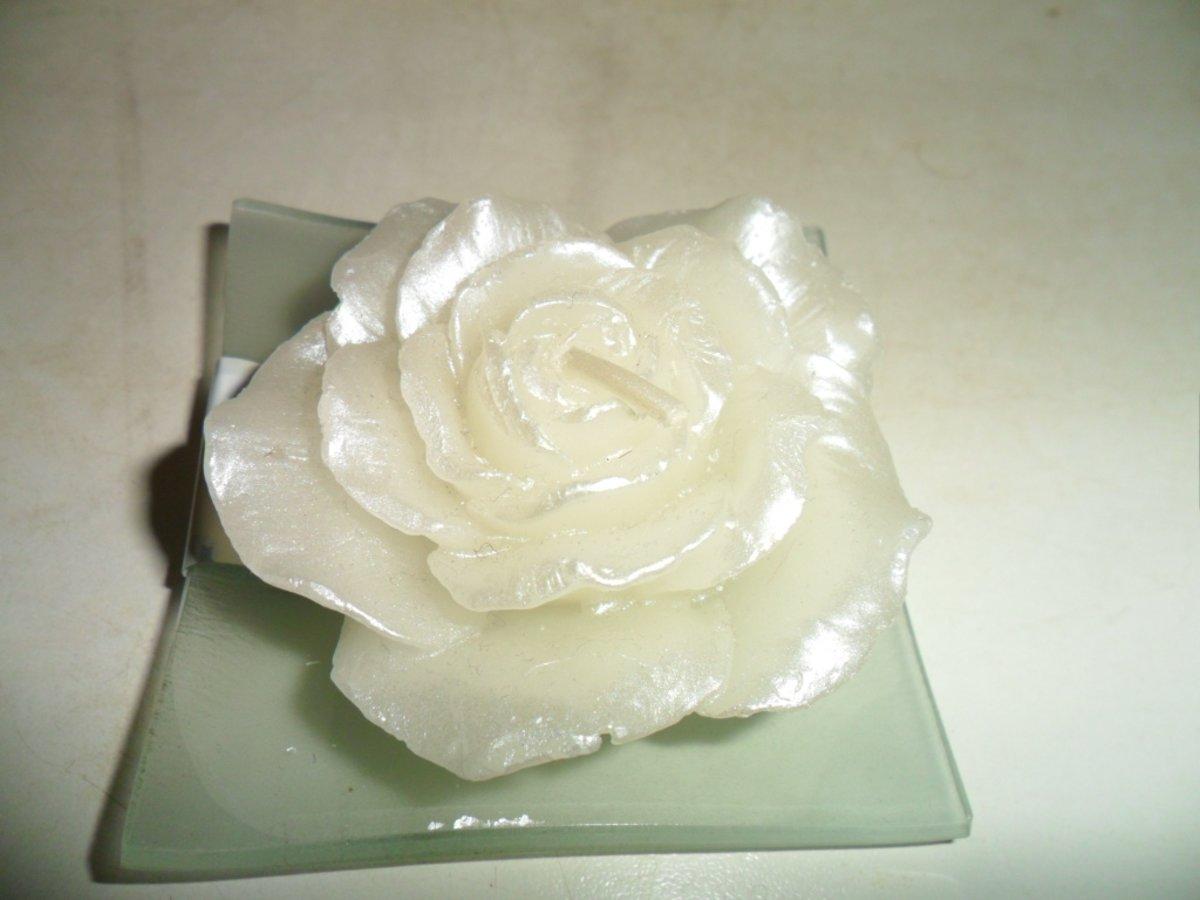 Blossom /& Gerberra PAPER /& SILK 20-85mm VE5 25 Flowers WHITE Camillia
