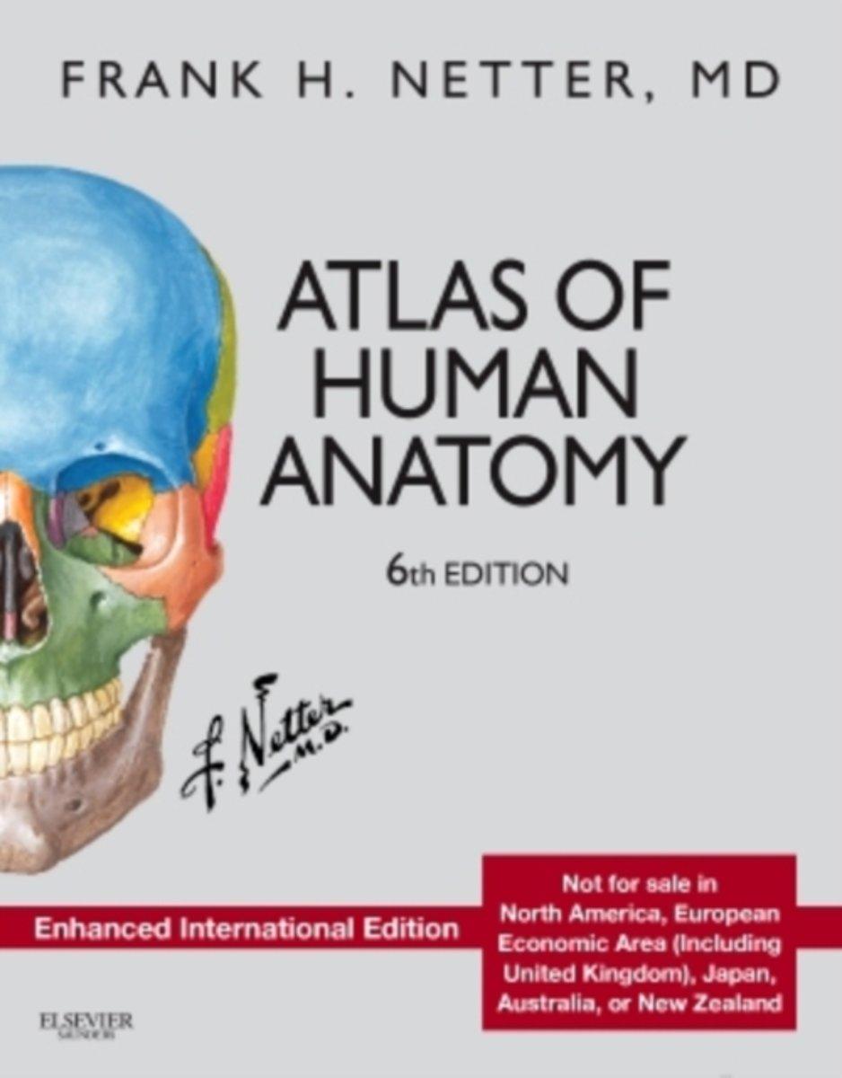 Fein Anatomie Malbuch Pdf Bilder - Malvorlagen Von Tieren - ngadi.info
