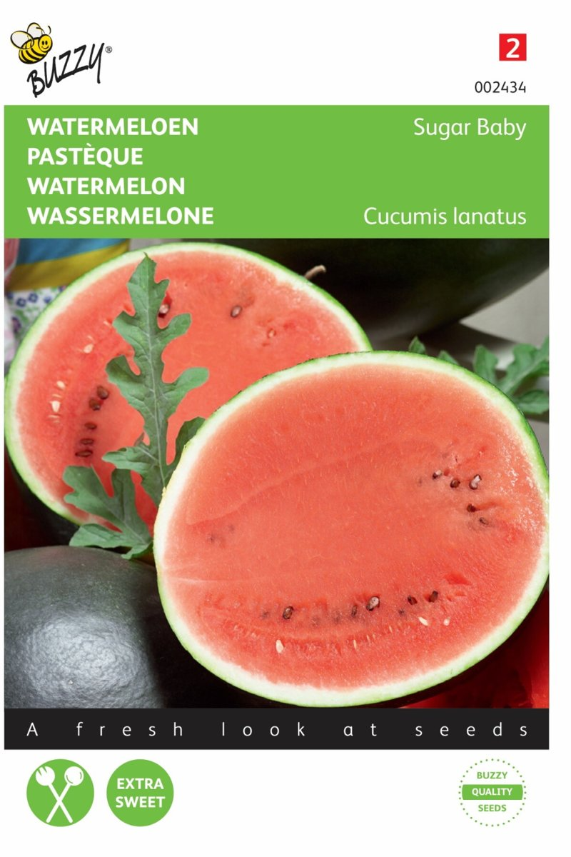 Watermeloen Sugar Baby - Citrullus lanatus - set van 7 stuks kopen