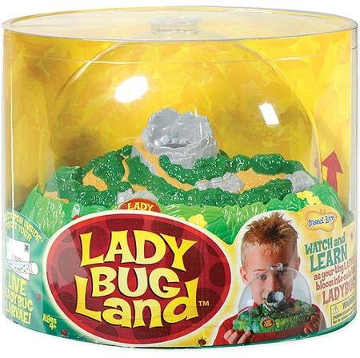Insecten verblijf kopen