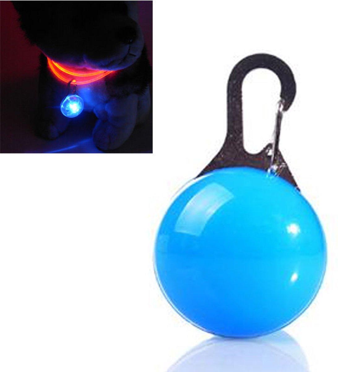 Led honden halsband verlichting - Led lamp hondenriem - licht voor aan de hondenriem - Blauw kopen