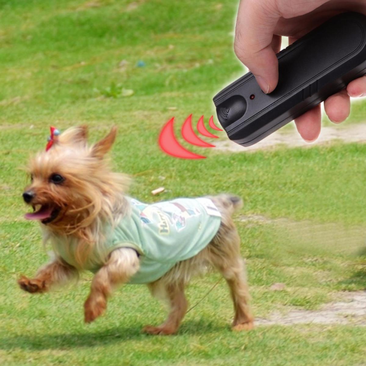 Ultrasone Anti Blaf Hond Repeller Met LED - Honden Trainer - Trainer Apparaat - Zwart - Dier Vriendelijk kopen