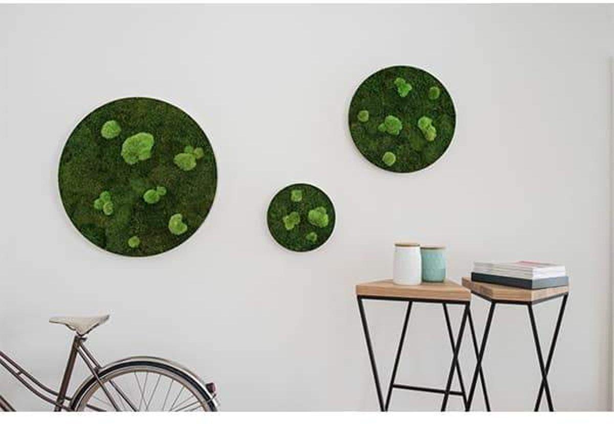 Verticale tuin - Jungle - 100 x 60cm