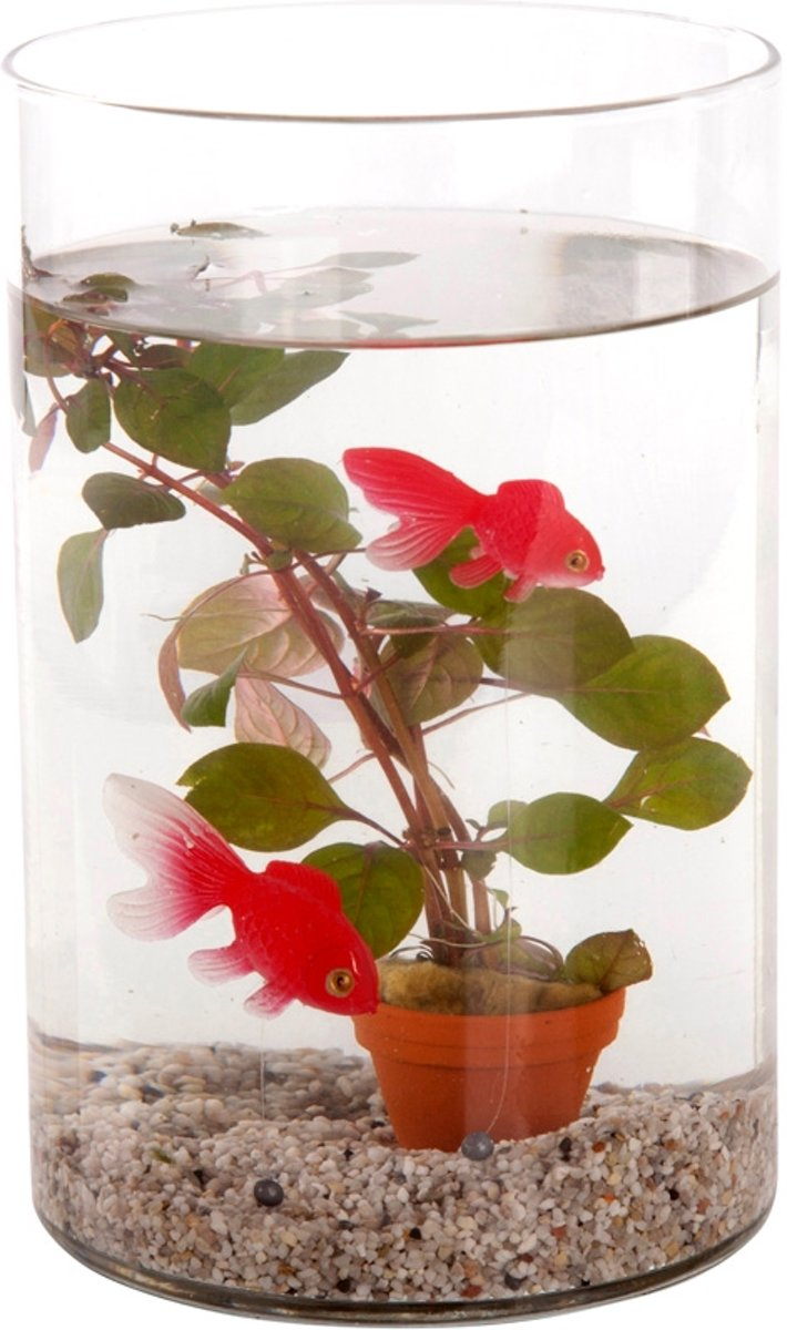 Waterworld® Deco Glas - Waterplant + 2 Kunststof Goudvissen