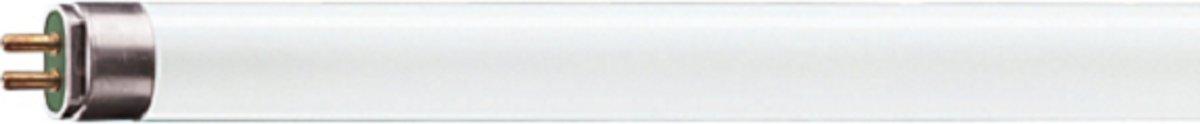 Daks TL-lamp 21W 830 - 21W - Kleur 830 - 860 mm kopen