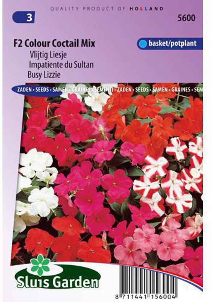 Sluis Garden - Vlijtig Liesje F2 Colour Cocktail (Impatiens) kopen