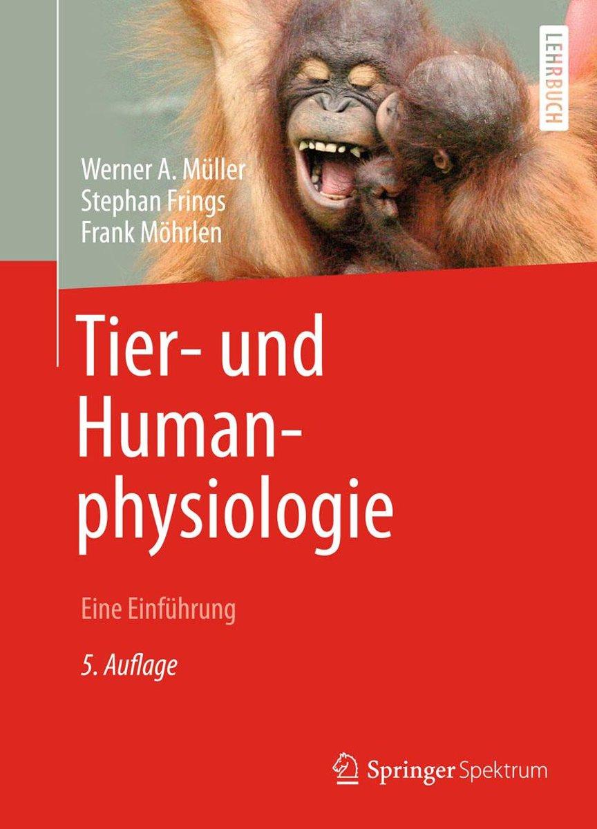 Nett Anatomie Und Physiologie Für Die Sprach Sprache Und Hören 5 ...