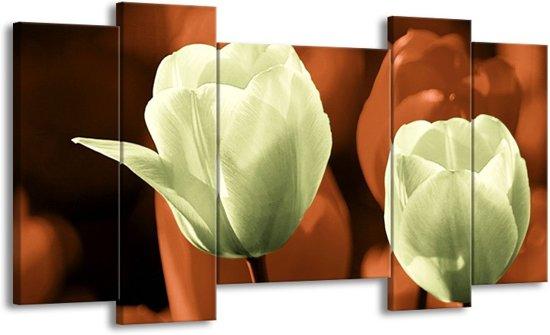 Canvas schilderij Tulp | Bruin, Grijs | 120x65 5Luik