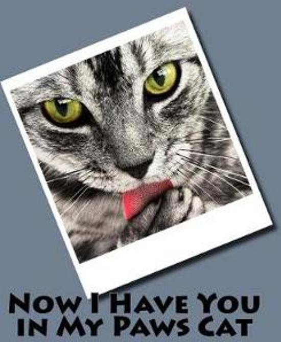 Now I Have You in My Paws (Journal / Notebook)
