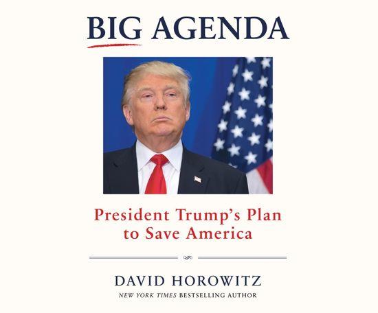 Boek cover Big Agenda van David Horowitz (Onbekend)
