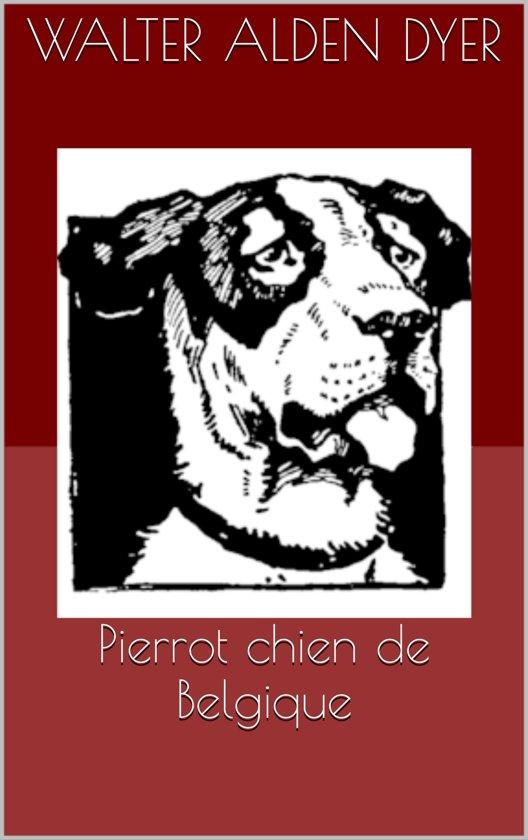 Pierrot chien de Belgique