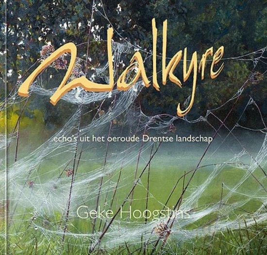 Walkyre - Geke Hoogstins  