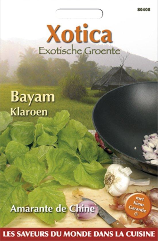 Buzzy® Xotica Bayam Klaroen