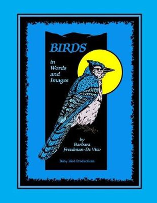 Birds in Words and Images: Original bird poems and bird illustrations in praise of the beauty and mystery of birds
