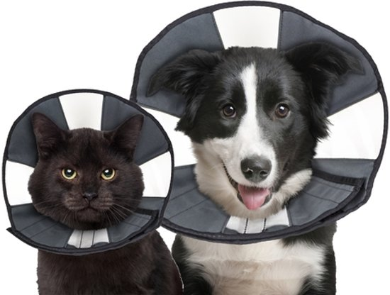 Zencone soft Recovery Collar Large
