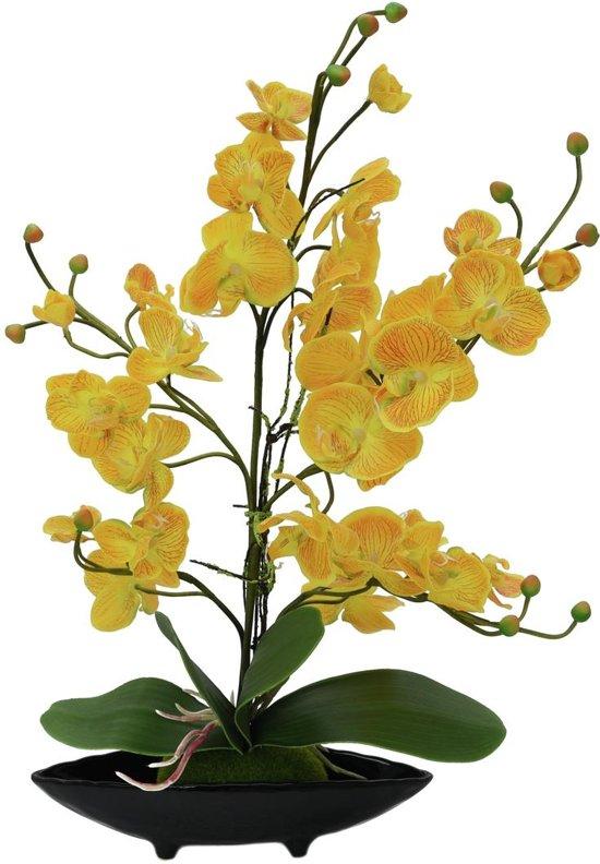 Bloemen In Pot.Europalms Orchidee Kunstplant In Pot Voor Binnen Of Buiten Gele Bloemen 60cm