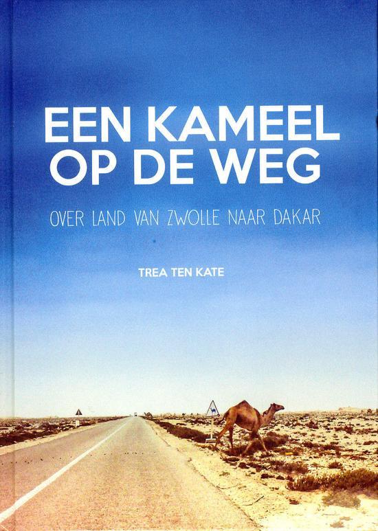 Een kameel op de weg