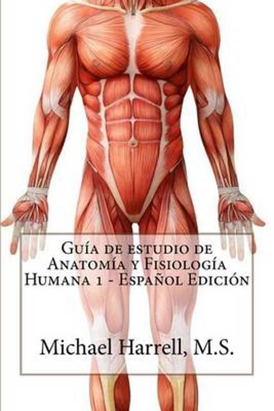 bol.com   Guia de Estudio de Anatomia y Fisiologia Humana 1 (Primera ...