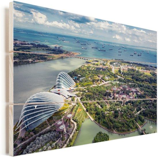 Foto vanuit de lucht van Gardens by the Bay Vurenhout met planken 60x40 cm - Foto print op Hout (Wanddecoratie)