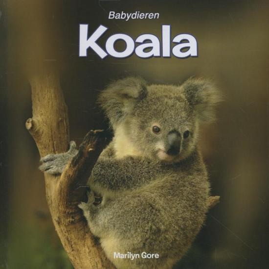 Babydieren Koala