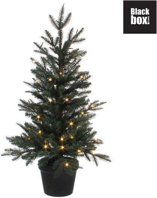 bol.com | Black Box Frasier Fir - Kunstkerstboom Blauwspar 120 cm ...