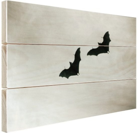 Twee vleermuizen in vlucht Hout 160x120 cm - Foto print op Hout (Wanddecoratie) XXL / Groot formaat!