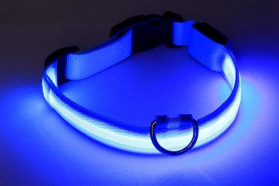 nylon honden halsband met led verlichting xl large blauw licht