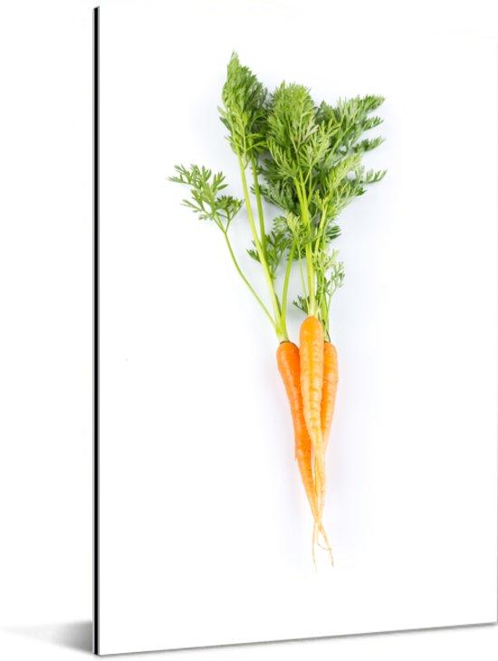 Verse wortel met groene bladeren op een witte achtergrond Aluminium 60x90 cm - Foto print op Aluminium (metaal wanddecoratie)
