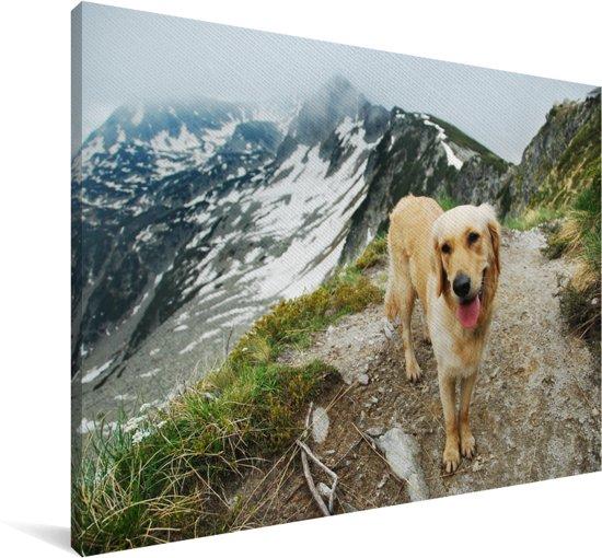 Een Golden Retriever op de bergpaden bovenop een berg Canvas 30x20 cm - klein - Foto print op Canvas schilderij (Wanddecoratie woonkamer / slaapkamer) / Huisdieren Canvas Schilderijen