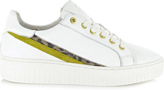 Stripes Stripes Shoecolate Wit40 Sneaker Wit40 Sneaker Shoecolate Shoecolate CoerdxB