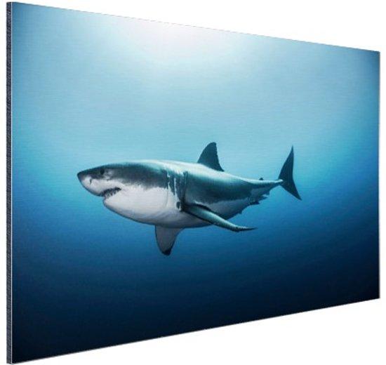 Zijaanzicht grote witte haai Aluminium 120x80 cm - Foto print op Aluminium (metaal wanddecoratie)