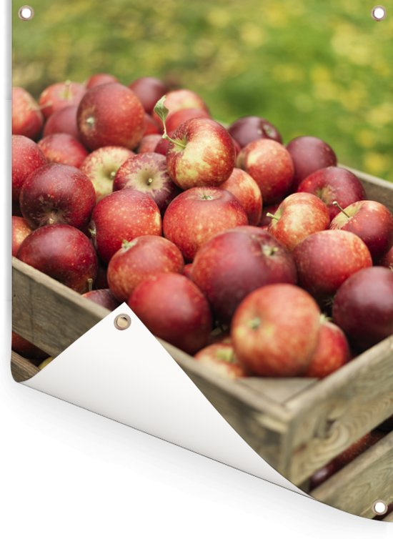 Houten kist met verse appels Tuinposter 60x80 cm - Tuindoek / Buitencanvas / Schilderijen voor buiten (tuin decoratie)