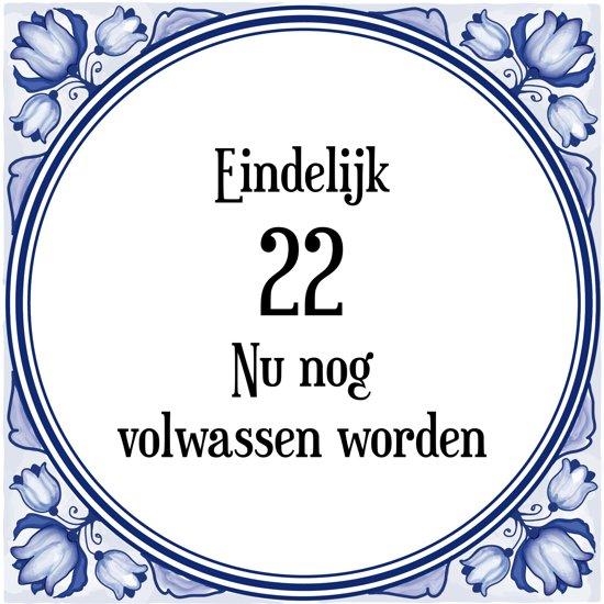 Verjaardag Tegeltje met Spreuk (22 jaar: Eindelijk 22! nu nog volwassen worden! + cadeau verpakking & plakhanger