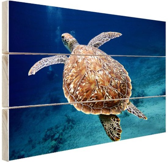 Zeeschildpad  Hout 80x60 cm - Foto print op Hout (Wanddecoratie)